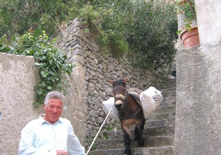 Pax man walking donkey down stairs