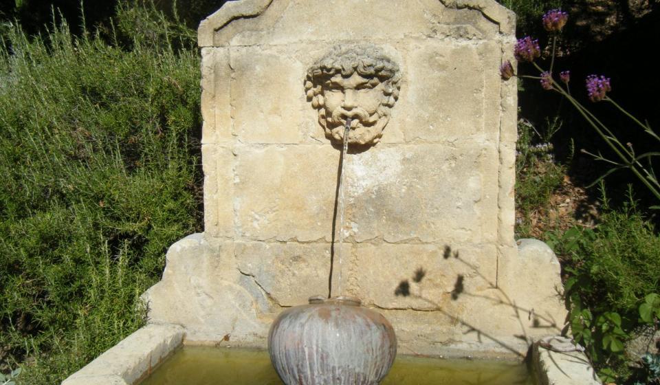 Fountain x webpage