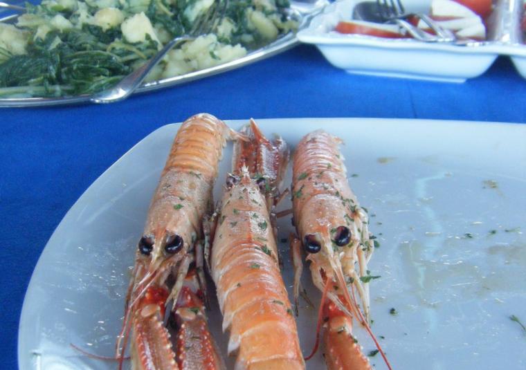 Food shrimps, vert