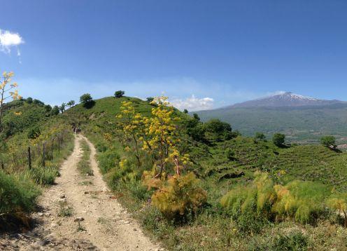10 etna view walk customwalks