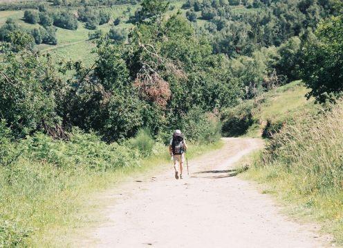 Hiker on camino