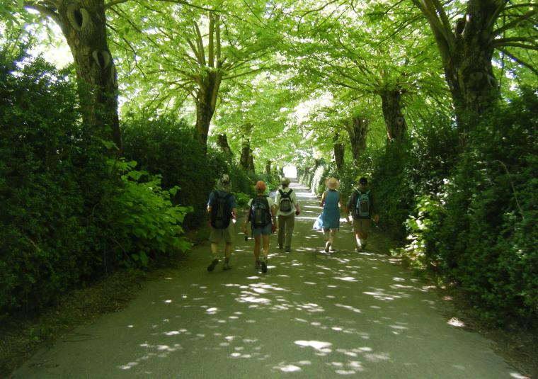 Pax walking to lilliano