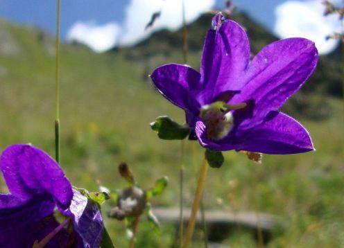Tuscany Mountains Hike