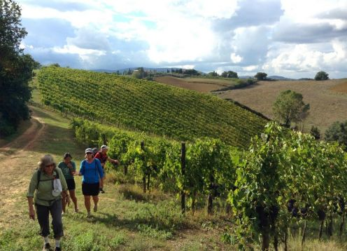 Tuscany Wine & Walk