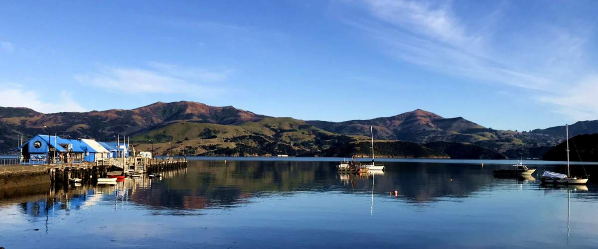 New Zealand Bays and Hilltops